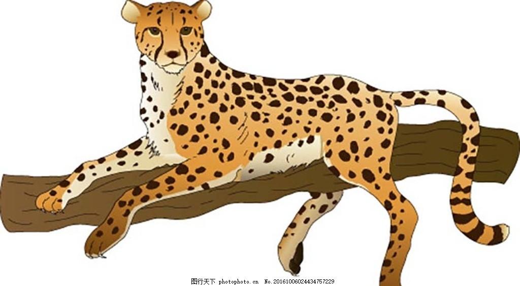 金钱豹 豹子矢量图 豹子素材 老虎 豹子标志 金钱豹子 黑美洲豹 动物
