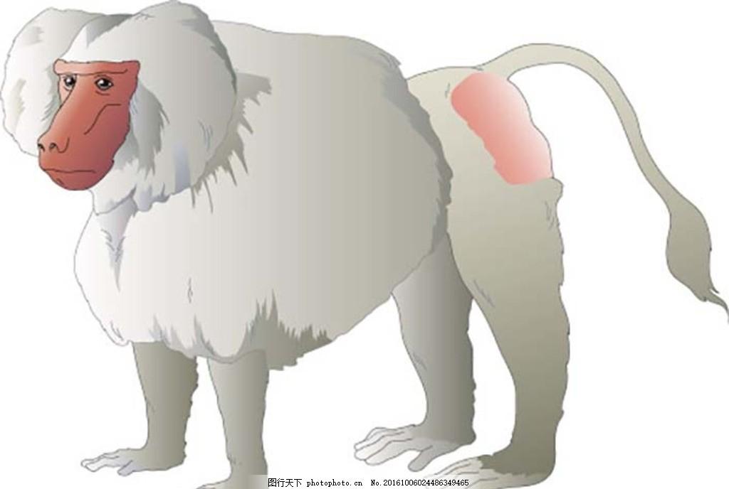 可爱萌猴子 猴子简笔画 猴子卡通图片 美猴王 卡通萌猴子 小猴子 大象