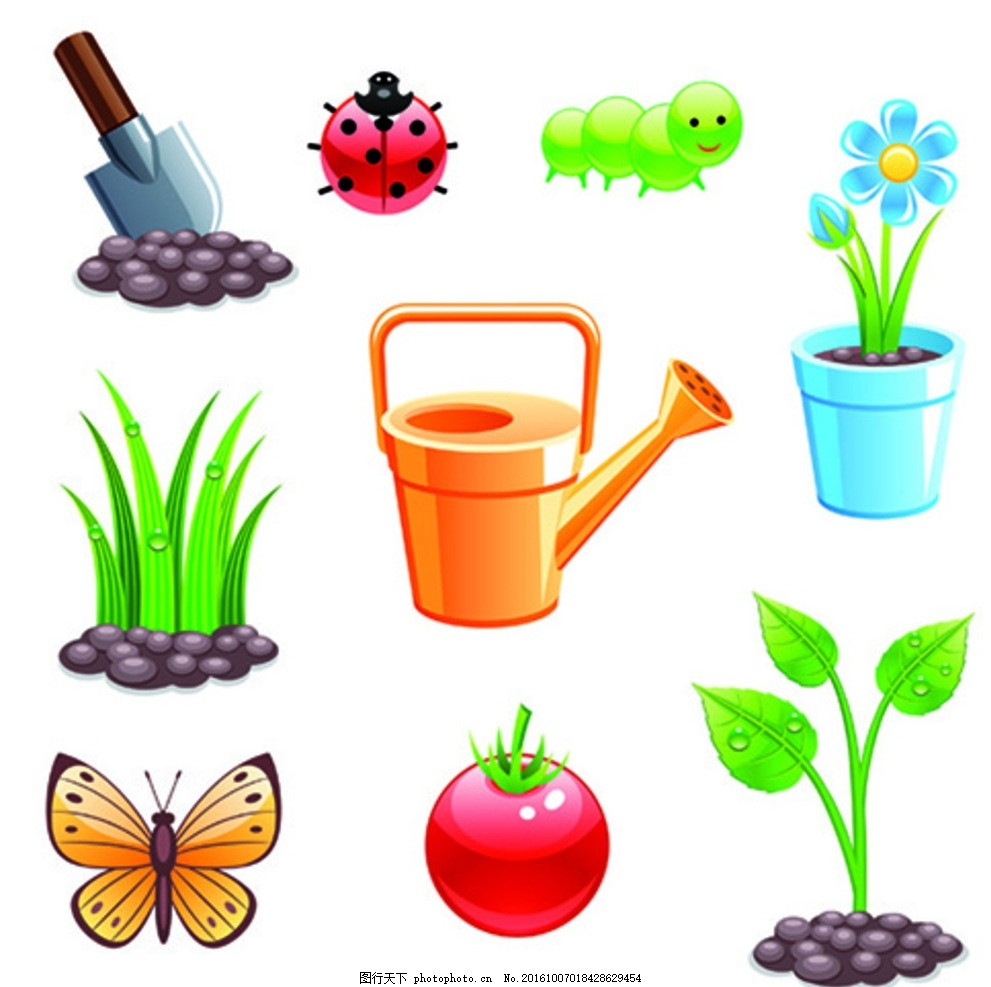 卡通植物 昆虫 和工具