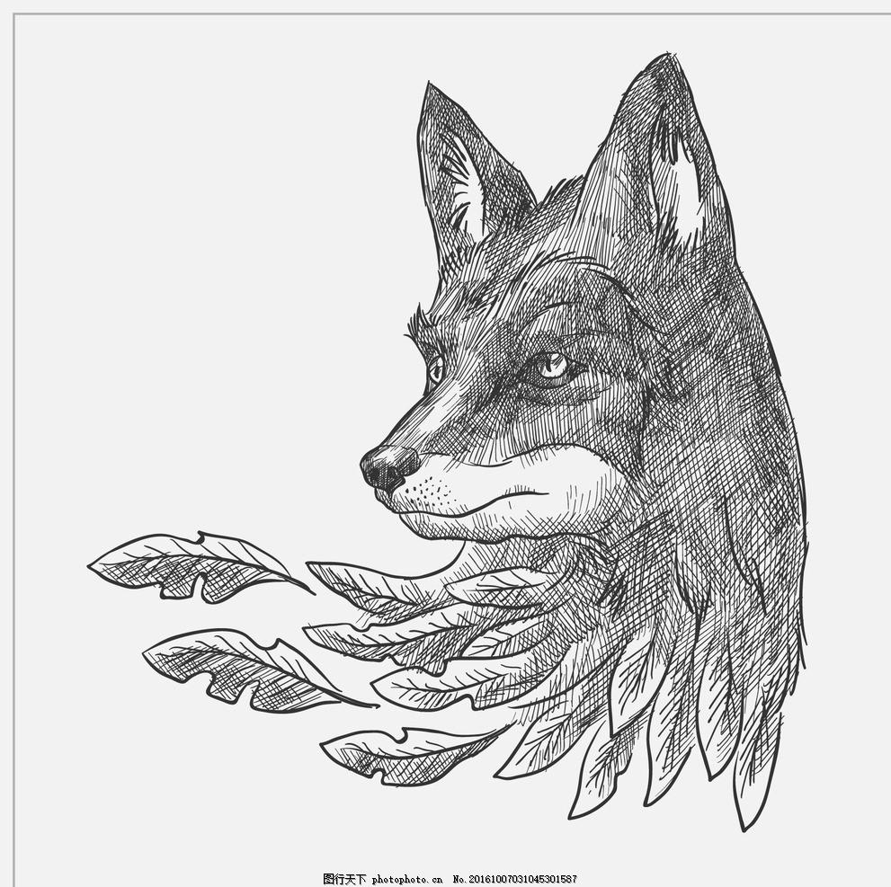 手绘狼 自然 动物 绘制 森林 叶 绘画 取材 野生 艺术 素描