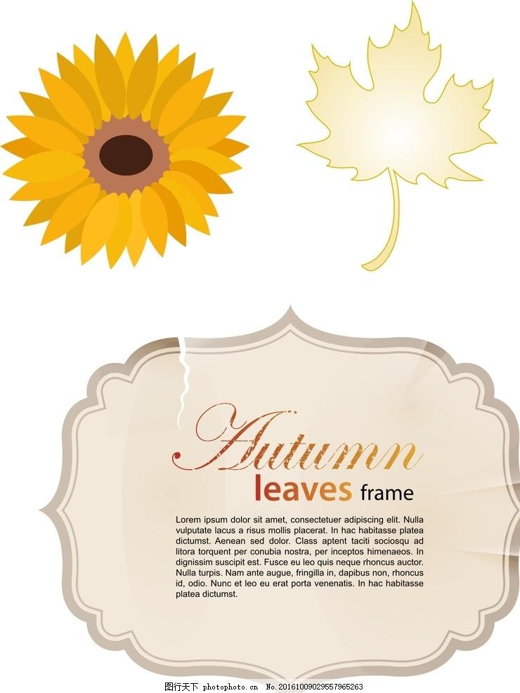 花纹边框 枫叶 向日葵