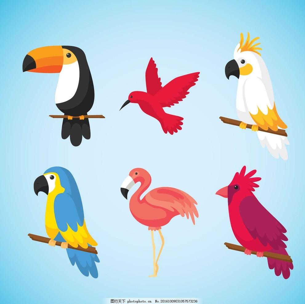 热带鸟类 自然 动物 翅膀 羽毛 丛林 热带动物园 鹦鹉 火烈鸟