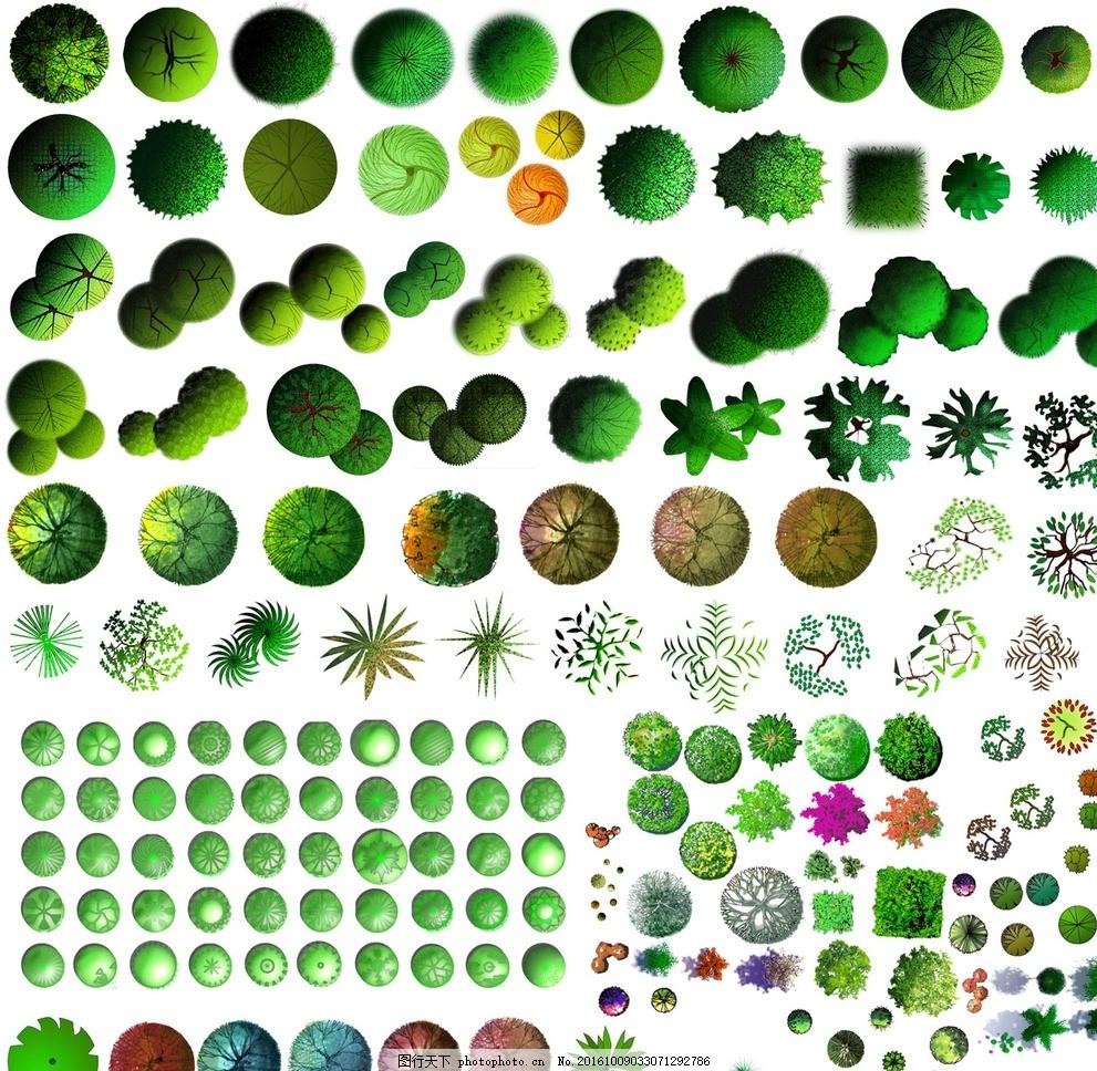 平面效果图 素材 乔木 公园 庭院 植被 灌木 色块 植物 彩铅 马克笔