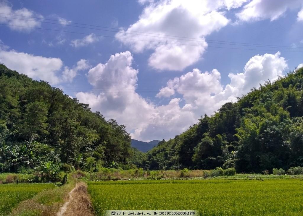 山川上的蓝天白云 树林 天空 森林 竹林 田野 自然景观 摄影