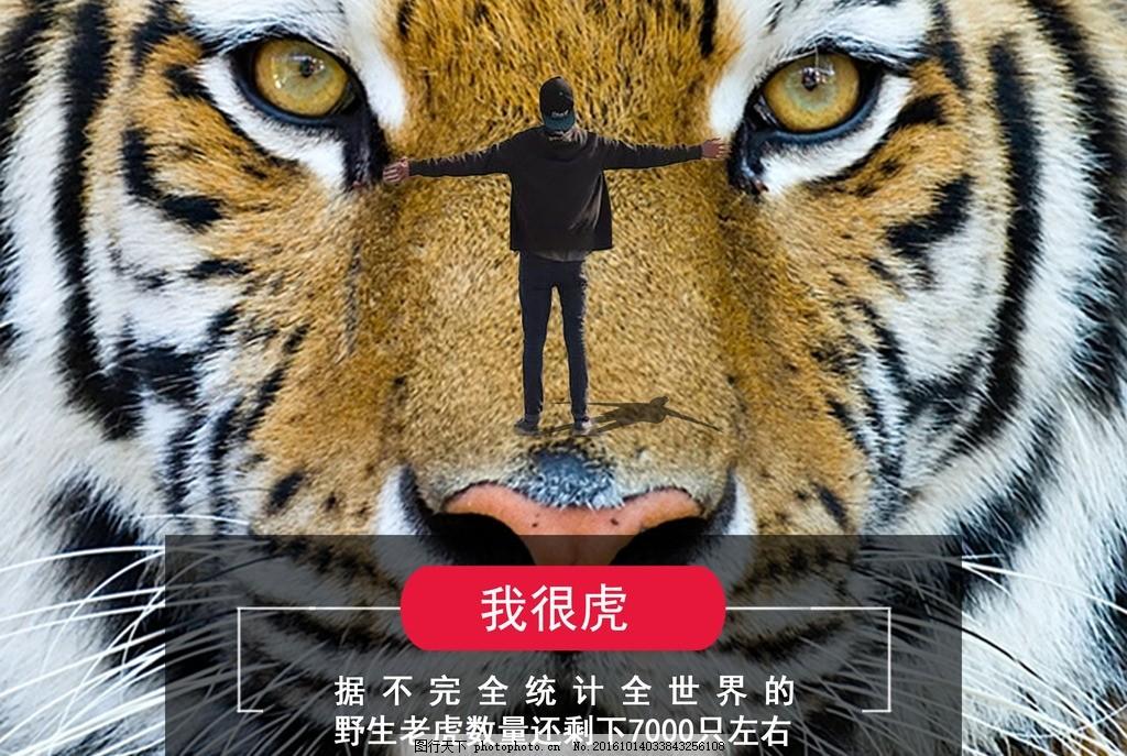 我很虎 环保 老虎 渺小 保护 动物 图片素材