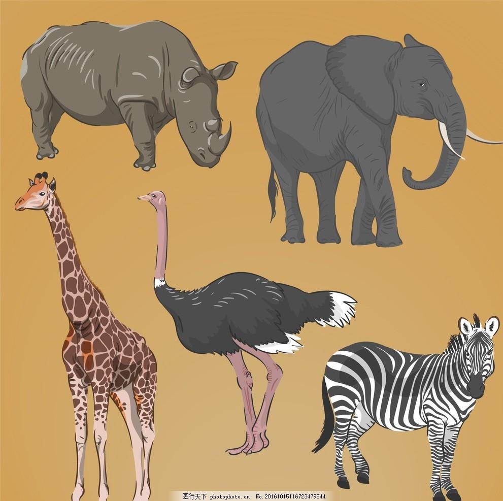 动物 绘制 大象 热带 绘画 长颈鹿 斑马 非洲 拉 野生 素描 野生动物