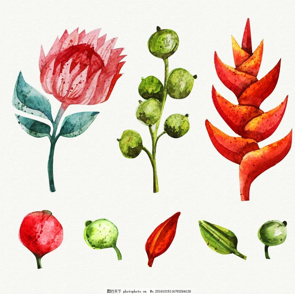 手绘的热带植物,花树 水彩 鲜花 自然 春天 树叶-图行