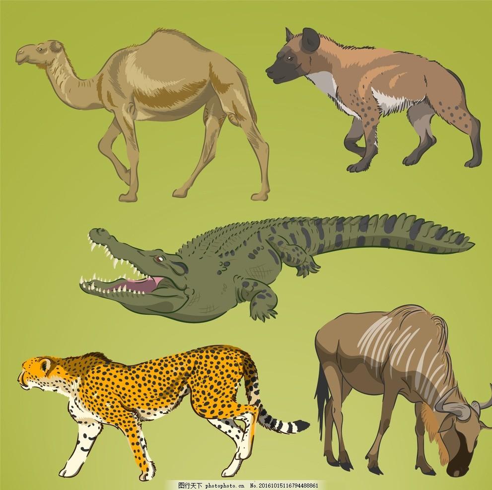 现实手绘野生动物