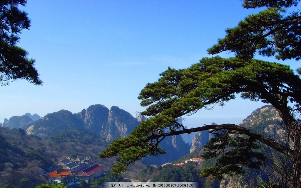黄山松高清 绝美黄山 黄山风景 迎客松 黄山图片 黄山绝景 黄山奇景