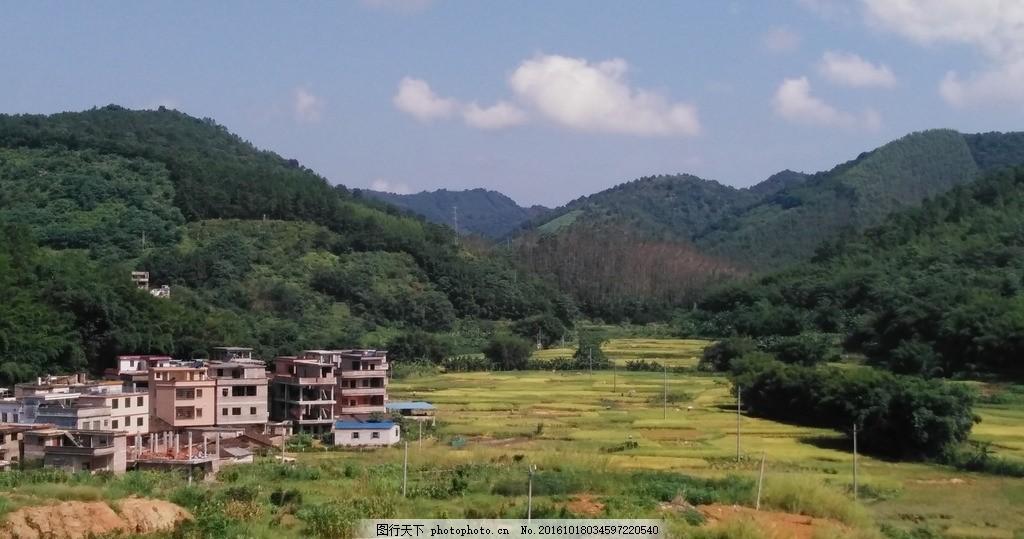 乡村田野 田野 田园 农田 稻田 田 乡村 农村 自然景观 摄影 自然景观