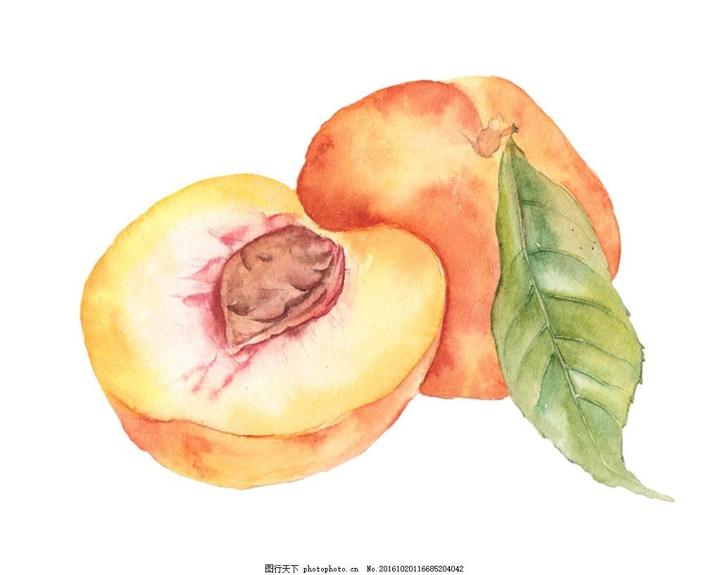 手绘水果 水彩 桃子 黄色 叶子 广告设计 其他