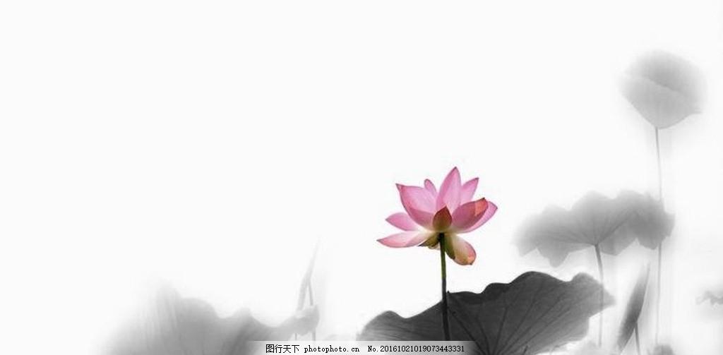 中国风 荷花      背景 素材 水墨画 设计 文化艺术 绘画书法 300dpi