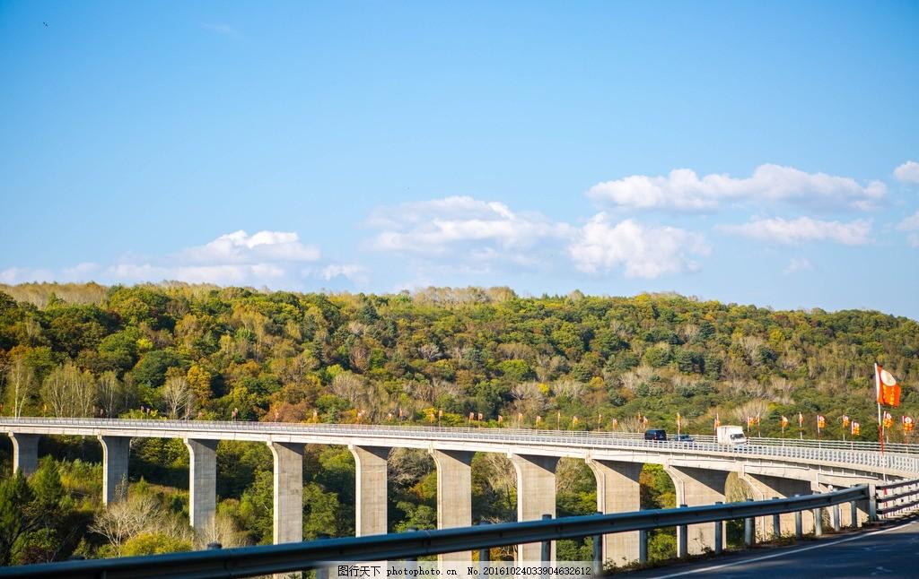 长白山风景 长白山 吉林省 树林 公路 蓝天 白云 摄影 旅游摄影 国内