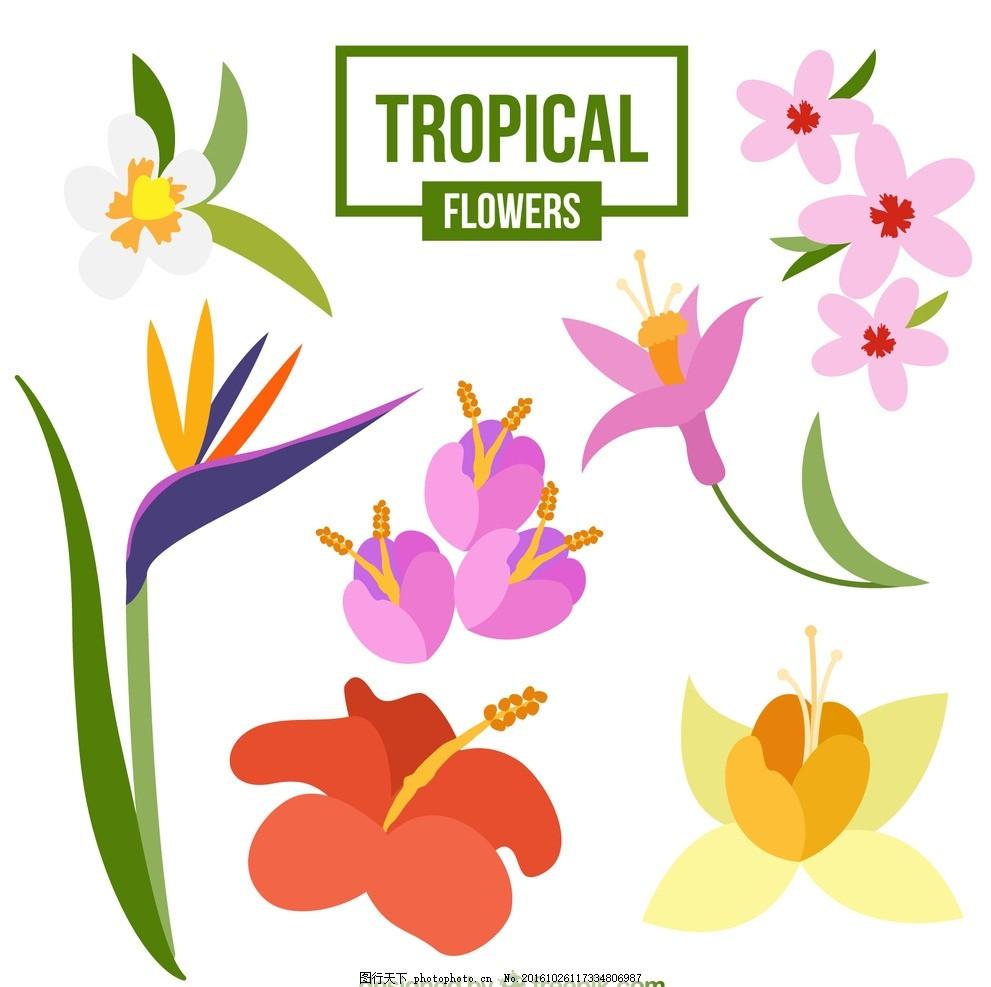 手绘彩色的植物 花树 鲜花 自然 春天 叶 棕榈 热带 开花