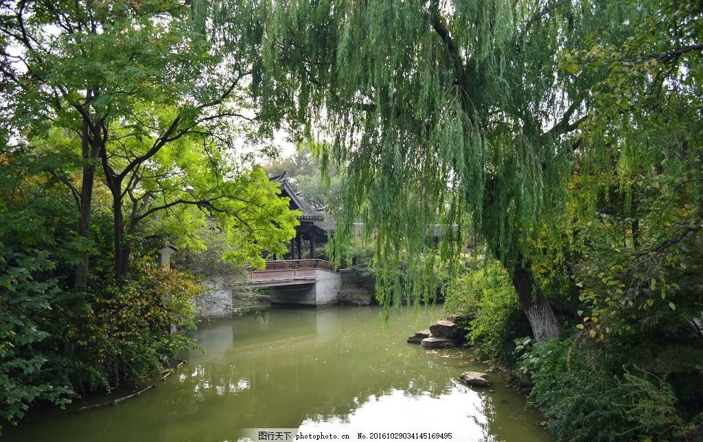 小桥流水 柳树 春天背景 桌面 小河 摄影 旅游摄影 自然风景 300dpi