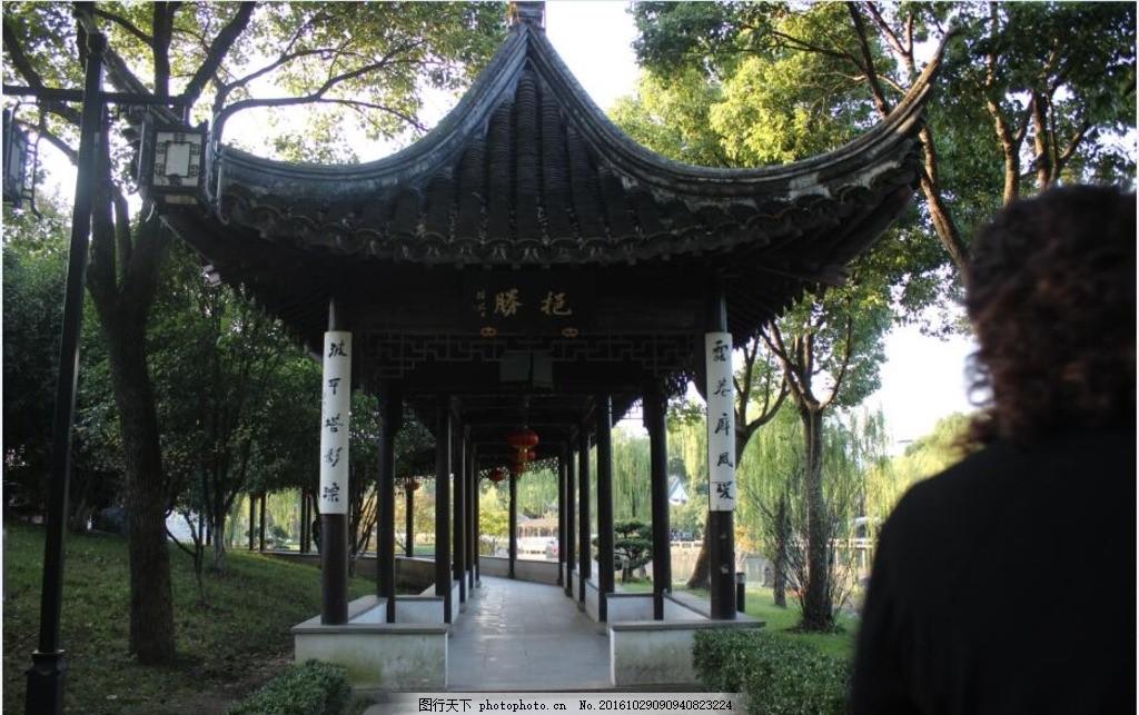 苏州园林亭子 苏州园林 小树 小草 大树 房屋 中国古建筑 中国园林