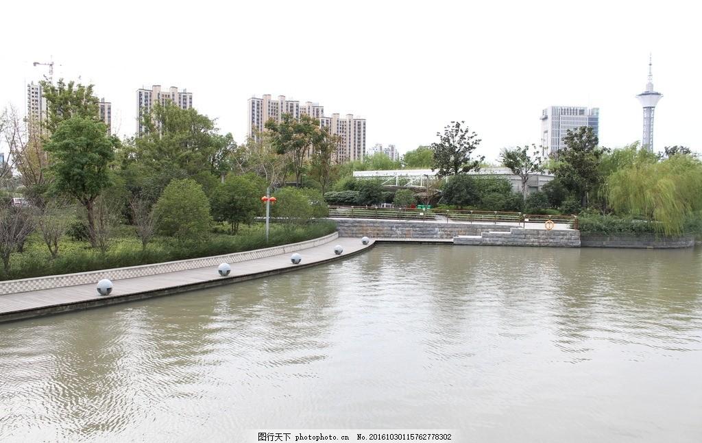 太仓天镜湖 江苏 苏州 公园 摄影 自然景观 自然风景