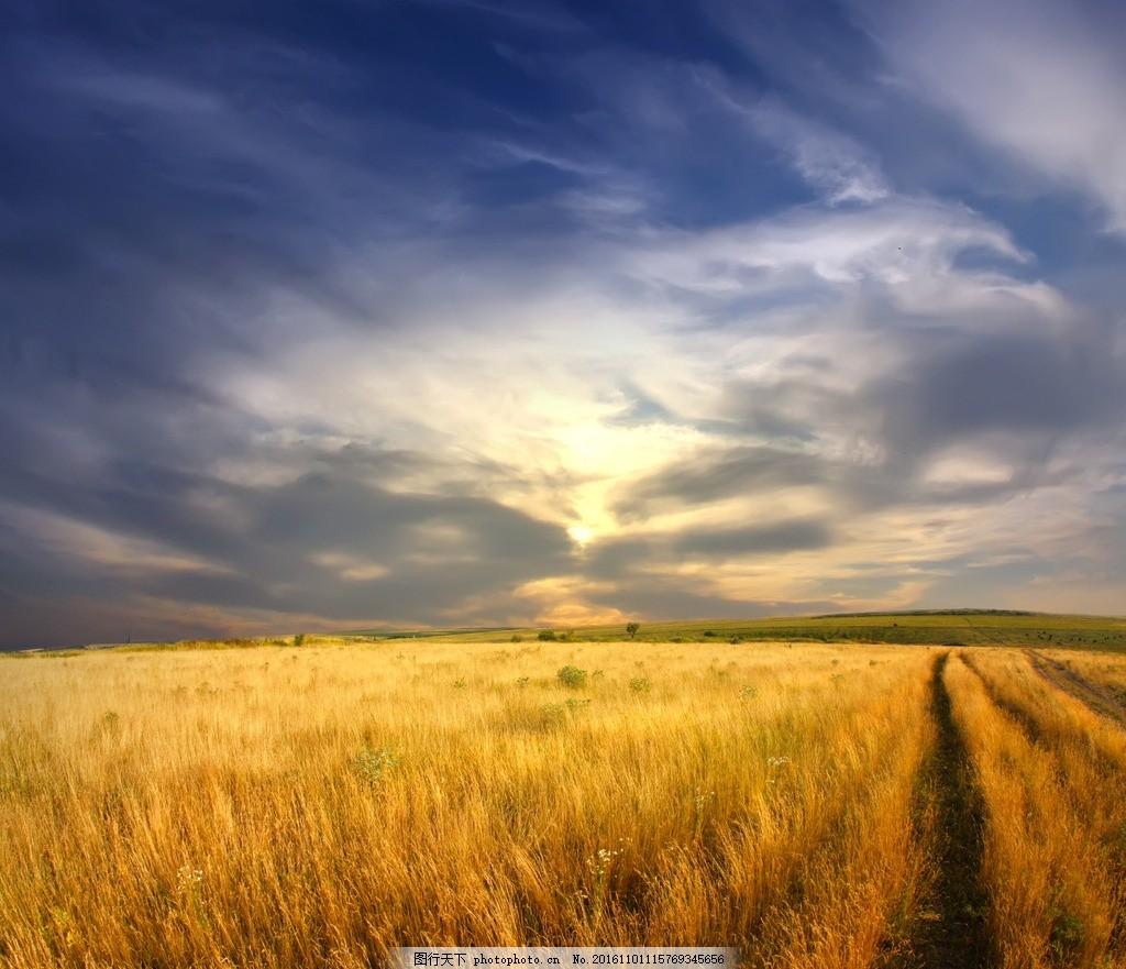 光线 光芒 草地 野草 风景 风光 原野 旷野 平原 大自然 高清风景