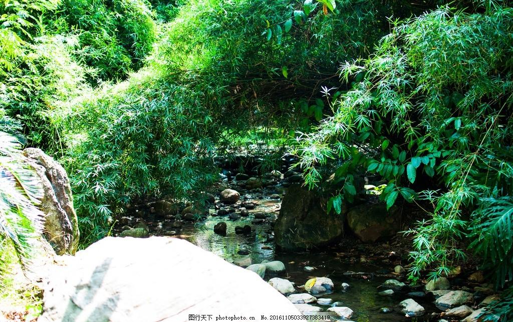 路 树林 风景 游玩 湖 小溪 摄影 旅游摄影 国内旅游 240dpi jpg