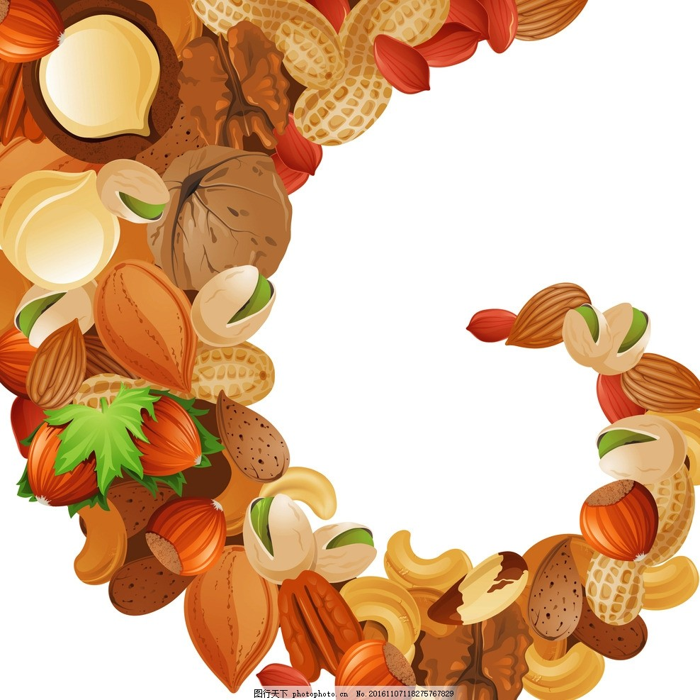 干果手绘图 干货 坚果 零食 休闲食品 坚果手绘 手绘干果 摄影