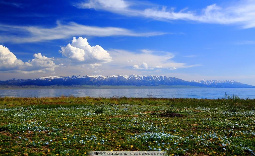 松林 雪山 雪地 蓝天 白云 山水风景 自然景观 摄影 新疆 自然风景