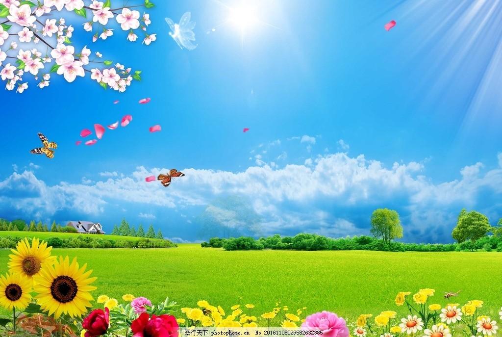 自然风景 背景 绿草地 蓝天草地背景 绿色草地 草地蓝天 蓝天白云图片