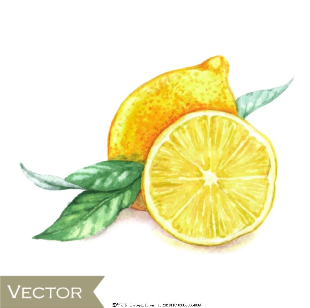 水果柠檬 水果素材 切开柠檬 手绘柠檬 卡通柠檬 设计小元素图片
