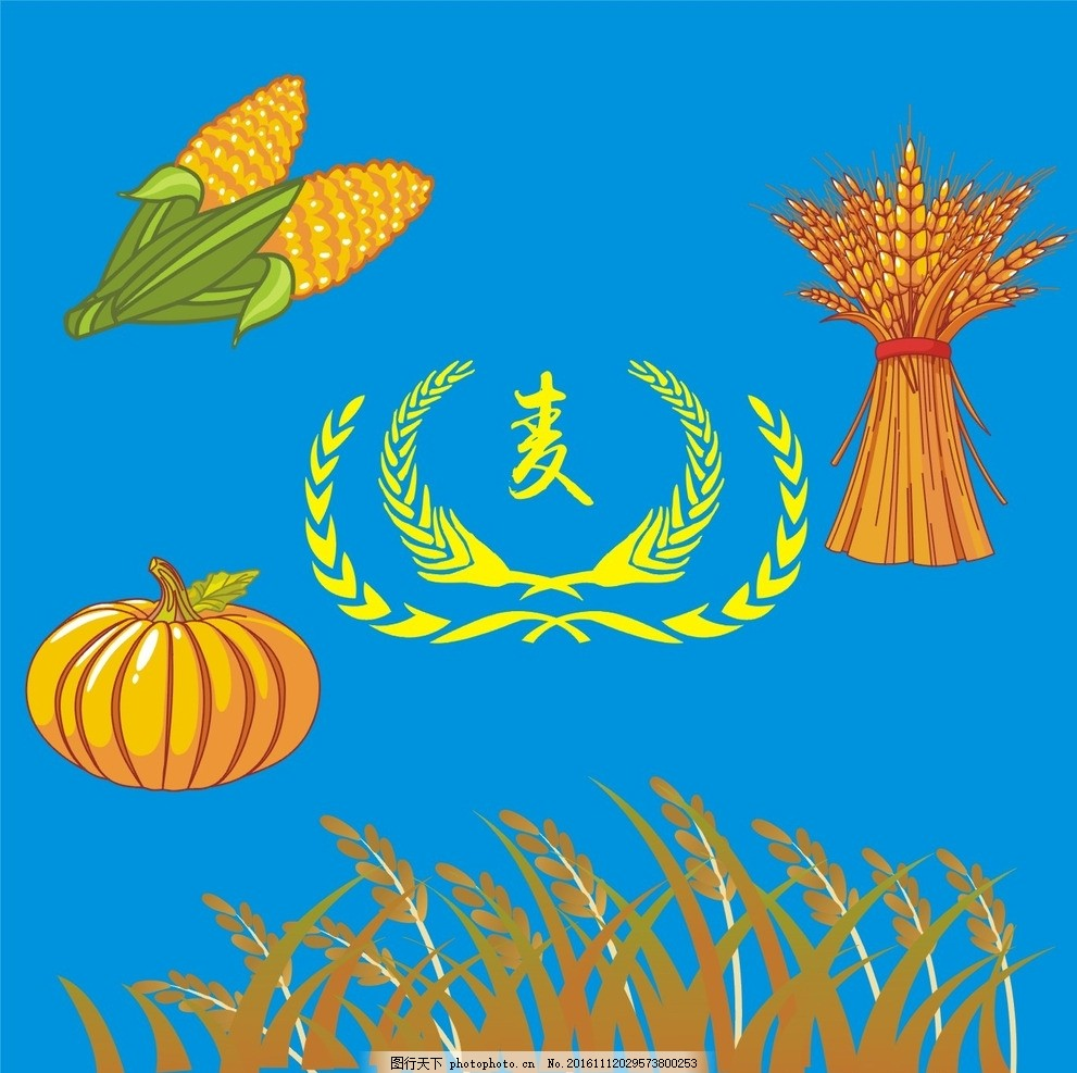 高粱 粮食 南瓜 玉米 麦香 小麦标志 面粉素材 小麦剪影 卡通 手绘
