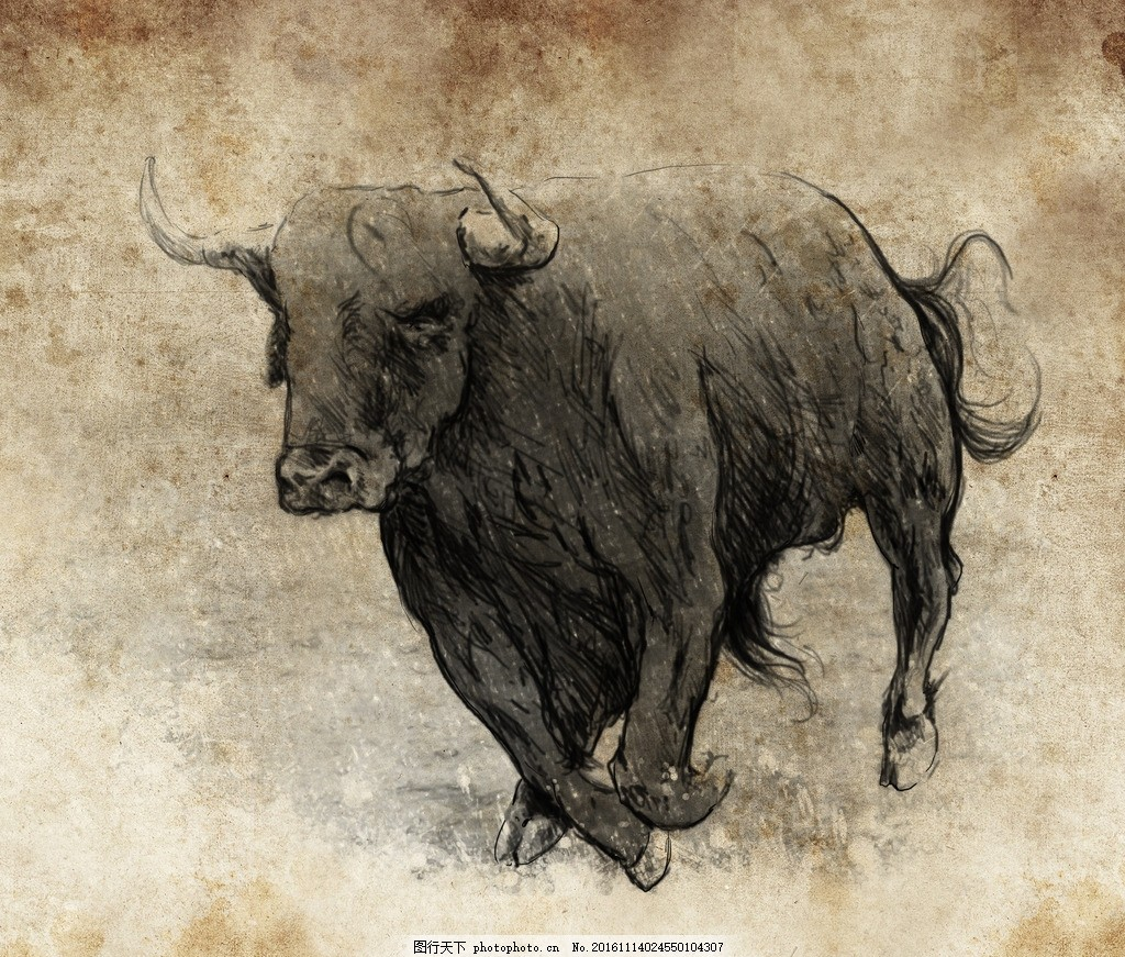 壁纸 动物 犀牛 野生动物 猪 1024_871