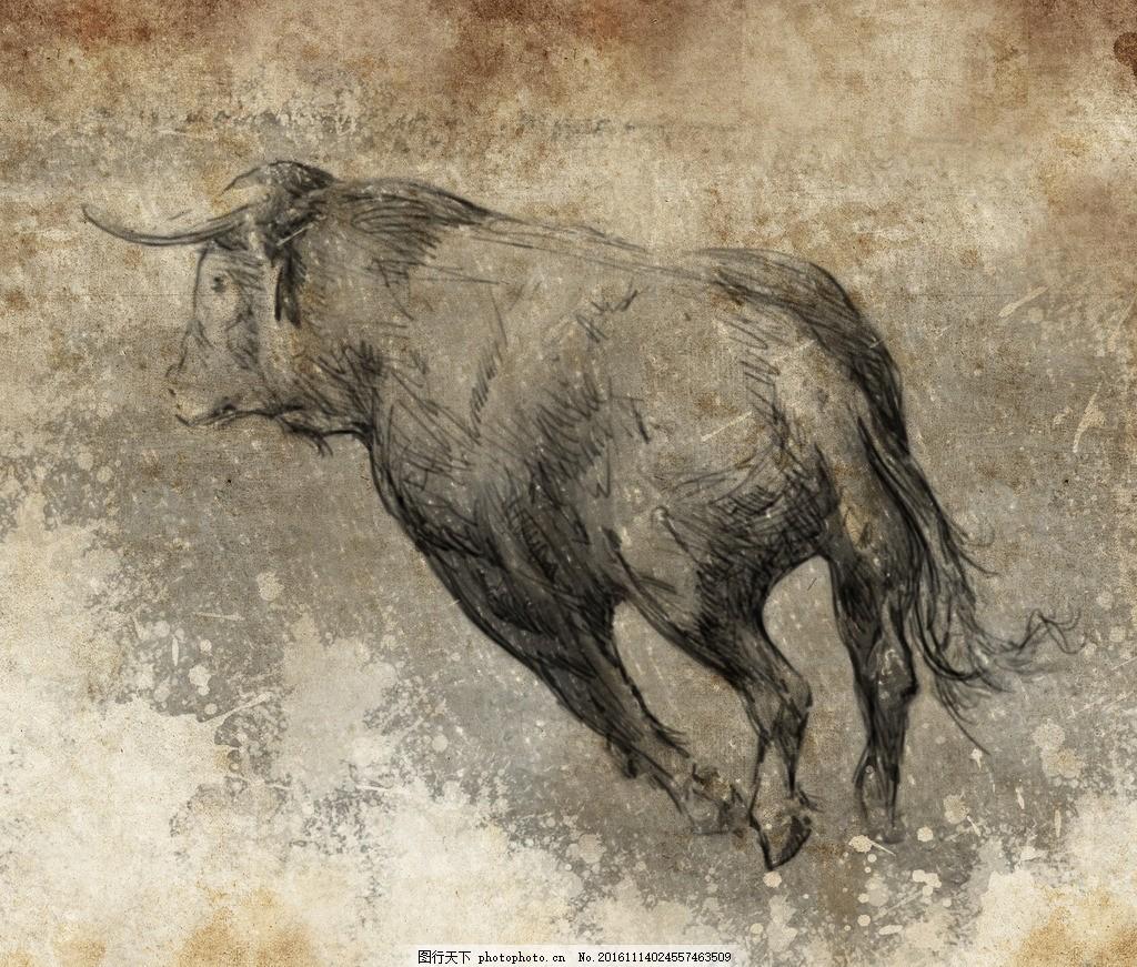 壁纸 犀牛 野生动物 1024_871