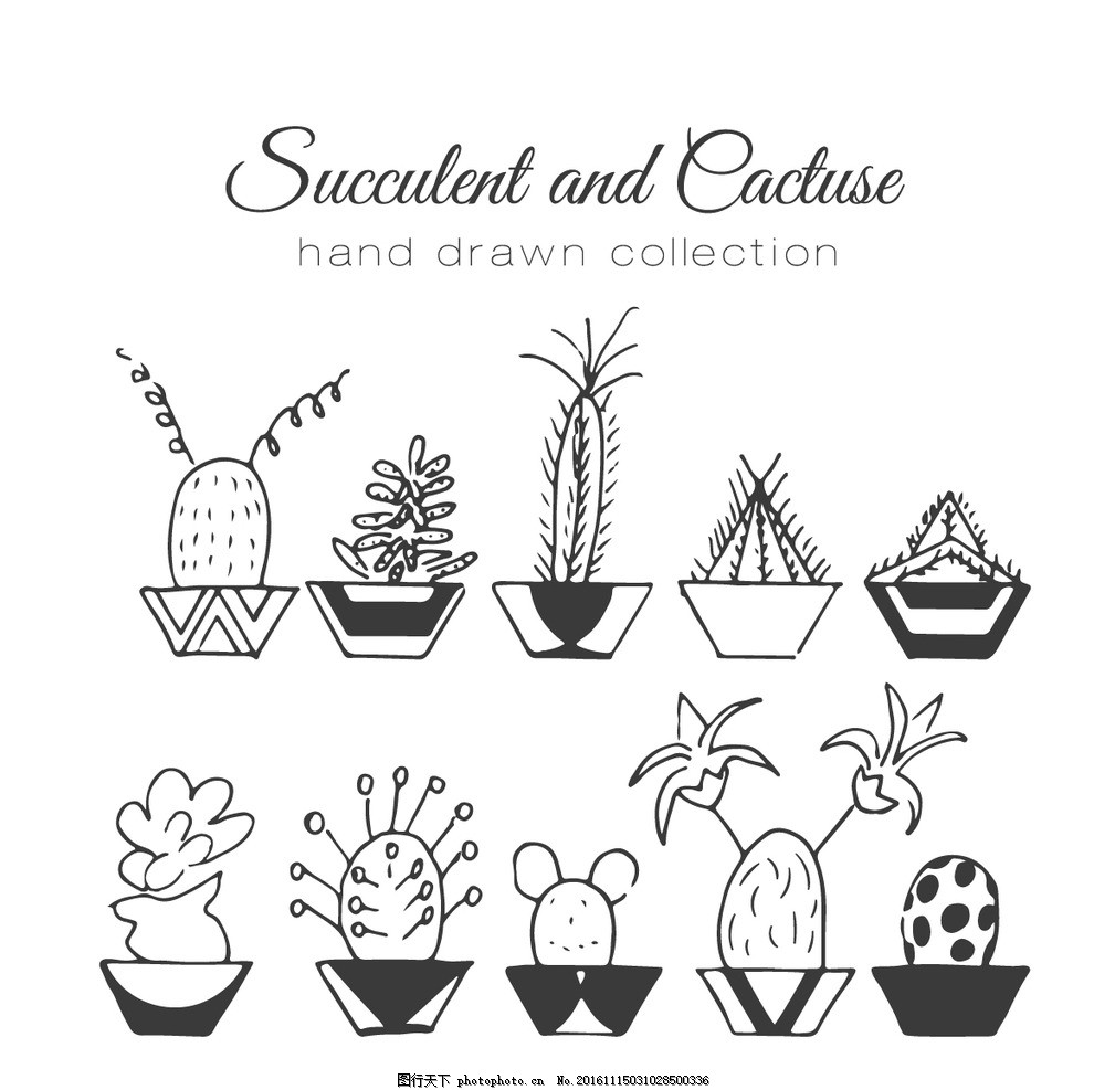 多肉线稿 卡通仙人掌 卡通多肉 卡通花盆 简单植物 矢量植物 植物素材