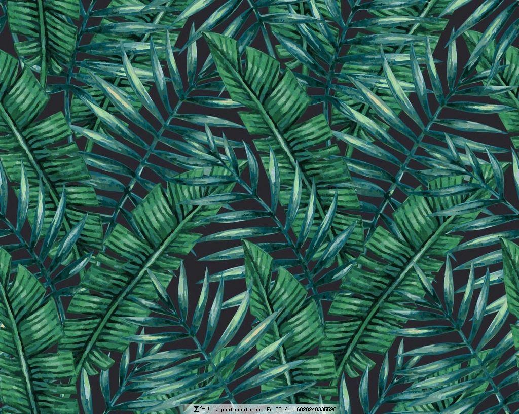 热带叶子背景