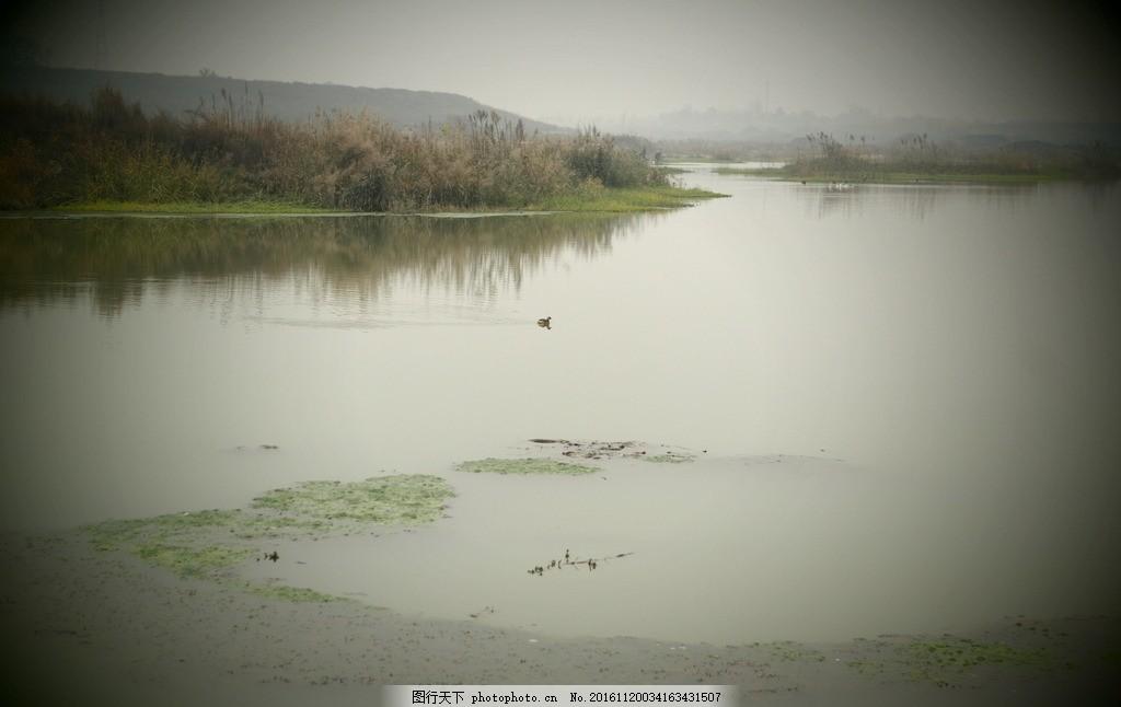 河道风采 河道 河流 河面 水草 秋天 风景 乡村风采 摄影 自然景观 自
