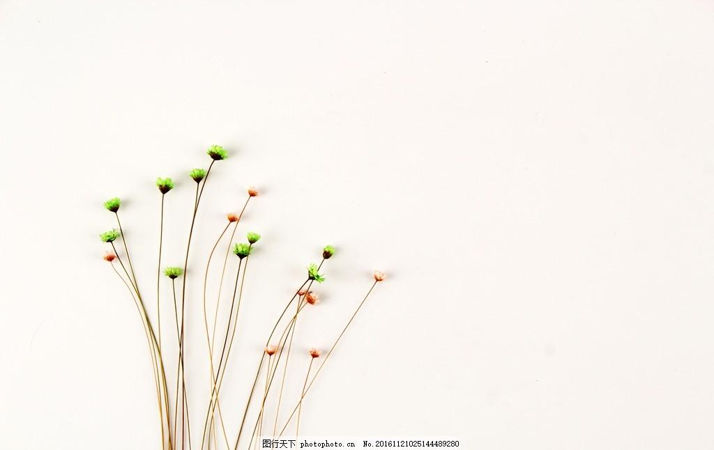 碎花 一束花 小花 绿色的花 红色的花 简洁 环保 背景 文艺范 小清新图片