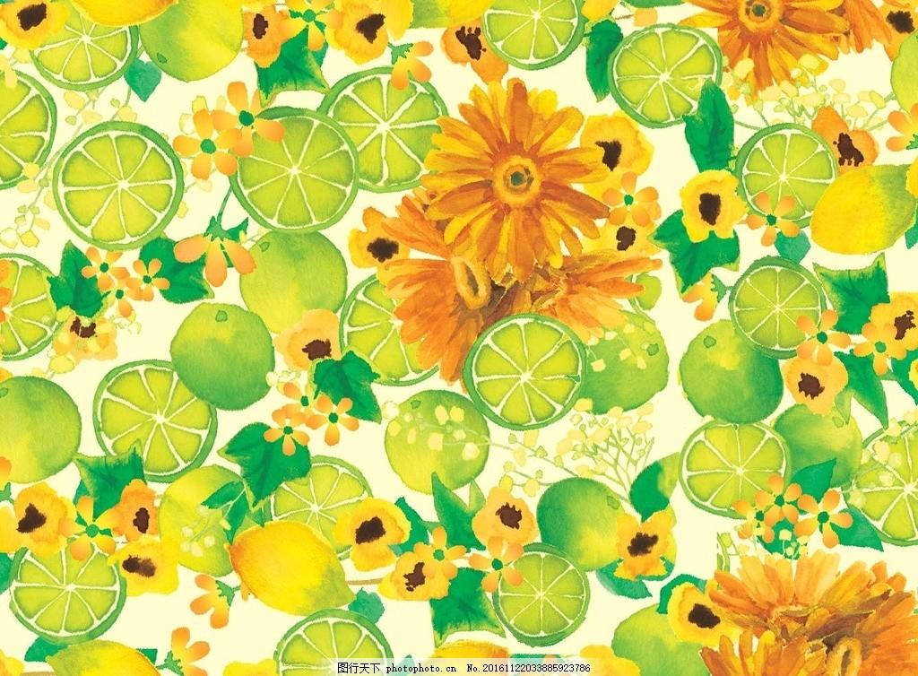 水彩柠檬 水果 菊花 手绘 图片素材
