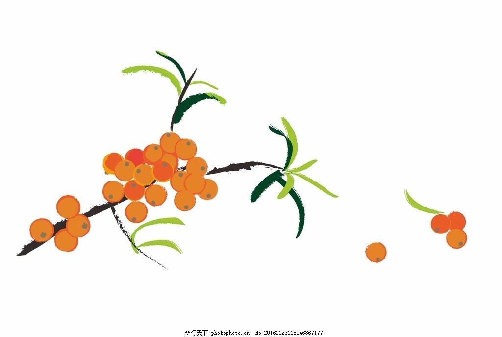 手绘沙棘 沙棘 手绘 矢量 植物 中国风 设计 标志图标 其他图标 cdr