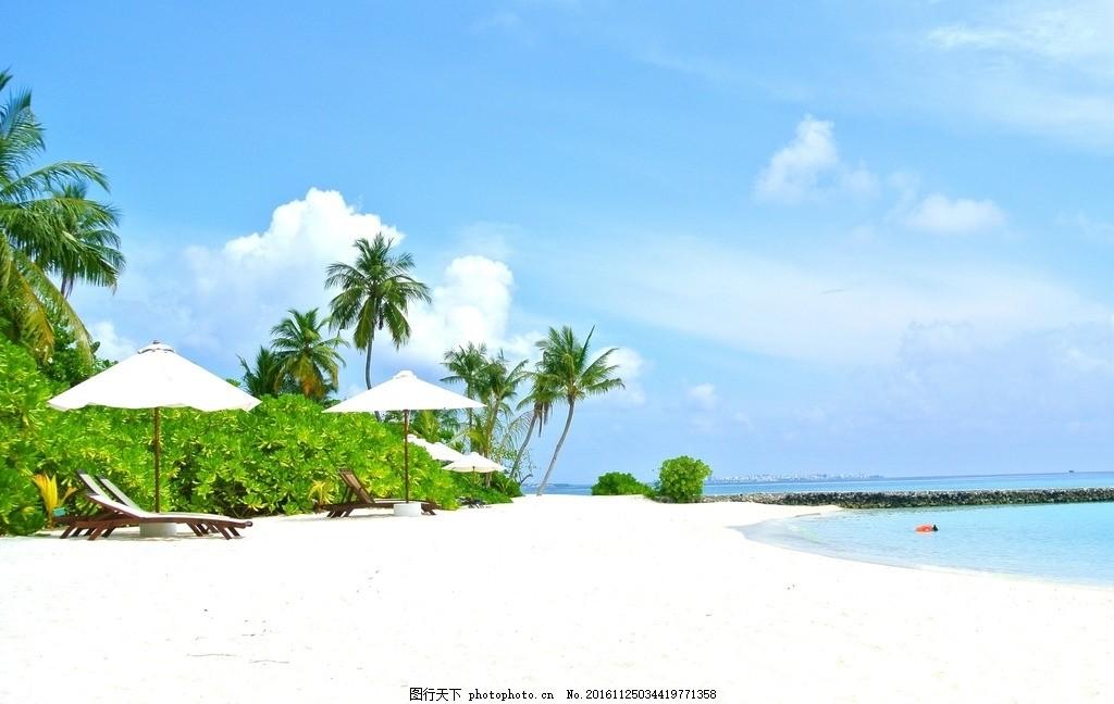 海边椰树的美丽景色 马尔代夫 椰子树 海 度假村 夏天 度假 天空 海洋