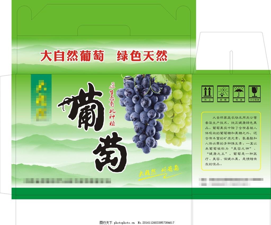 葡萄箱 背景山 绿葡萄 红葡萄 紫葡萄 手提箱 纸箱 包装设计 设计