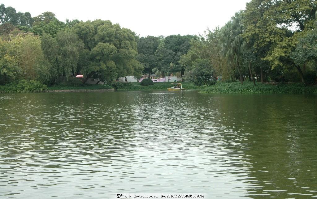 湖边湖水 倒影 树 风景 拍摄图片 摄影