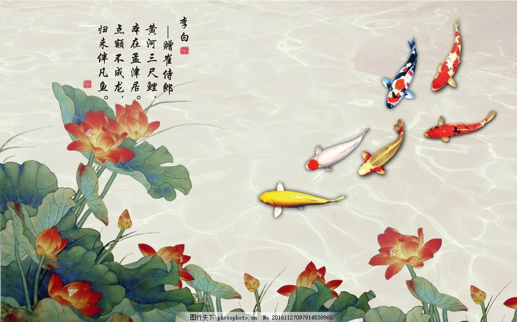荷花金鱼素材背景,壁纸 风景 高分辨率图片 高清大图