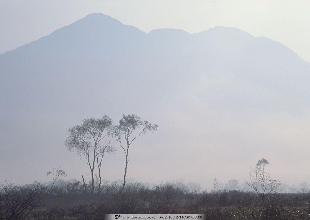 夏天风景图片素材 四季风景 夏天风景 山峰 树木 大雾 山水风景 风景