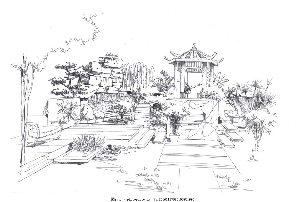 园林景观手绘钢笔画线稿 手绘线稿 园林小品手绘 植物线稿