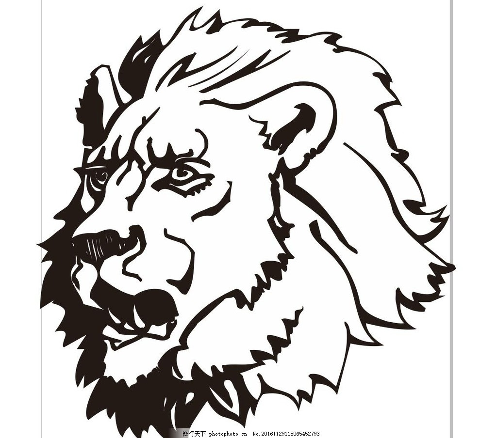 大狮子 雄狮 动物 野生动物 插画 装饰画 简笔画 线条 线描 简画 黑白