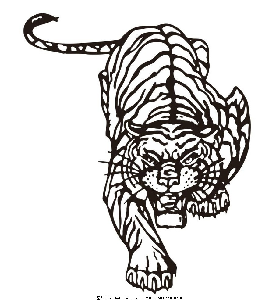 老虎 大老虎 伏虎 卧虎 动物 野生动物 插画 装饰画 简笔画