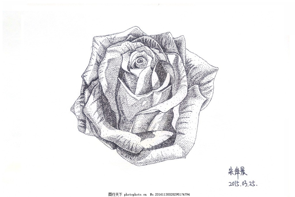 玫瑰点画 绽放的玫瑰 玫瑰花 点画 创新画法 花瓣 黑白画 壁画 设计