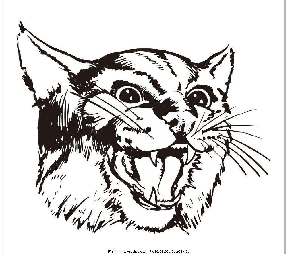 猫头 猫咪 小猫 猫 素描 动物 野生动物 插画 装饰画 简笔画 线条