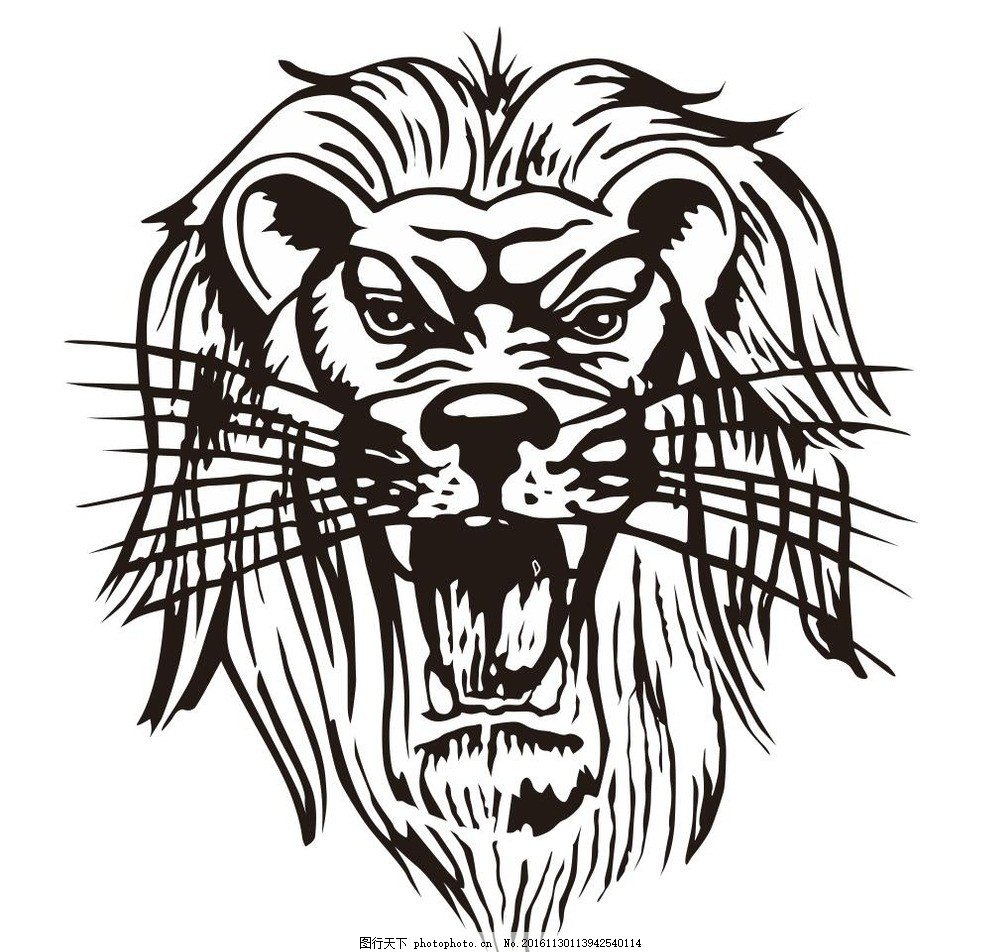 狮子头 狮头 素描 动物 野生动物 插画 装饰画 简笔画 线条 线描 简画