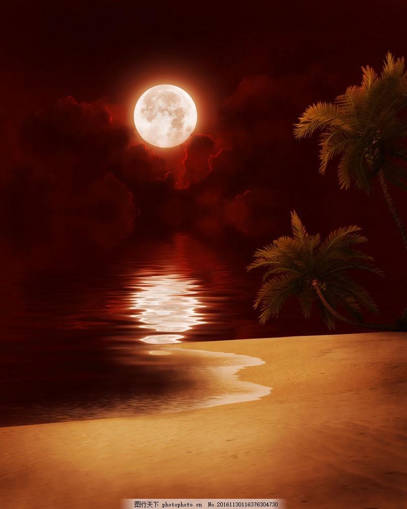 美丽沙滩风景图片素材 沙滩风景 海滩风景 美丽风景 椰树 椰子树 月亮