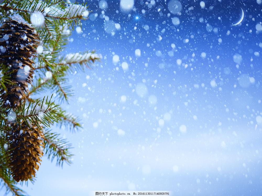 圣诞背景素材 圣诞背景素材图片素材 松果 松树 雪花 月亮 雪地