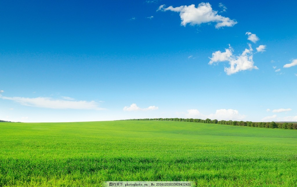 秦皇岛农田 唯美 风景 风光 旅行 自然 麦田 田野 农业旅游